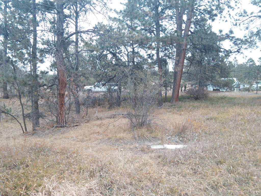 Black Forest, Colorado - Lot